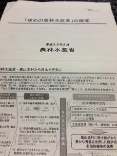 農水省資料.JPG