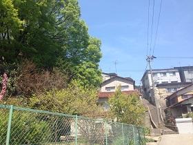 2014-04-24 12.33.28.jpg