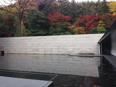 2014-11-18 14.36.29.jpg